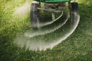 grass-fertilization